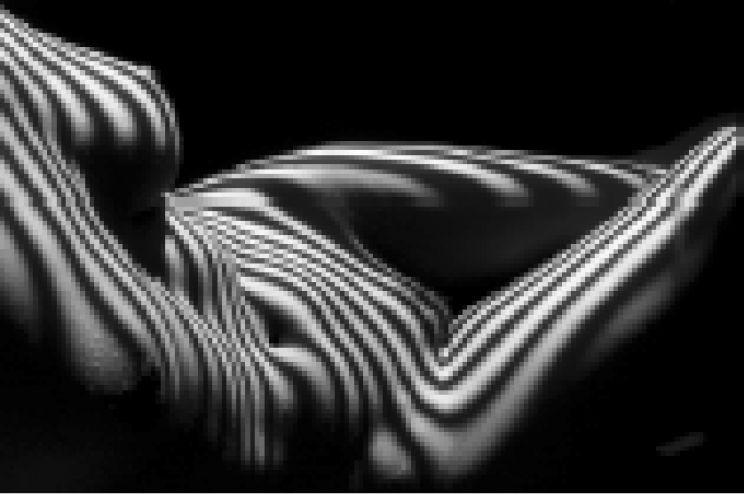 modernism artists lucien clergue zebra nude